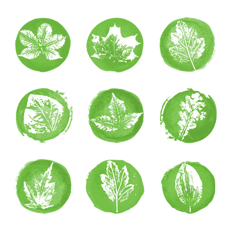 water chestnut: Collection of white leaves imprints icons on green watercolor round backgrounds Illustration