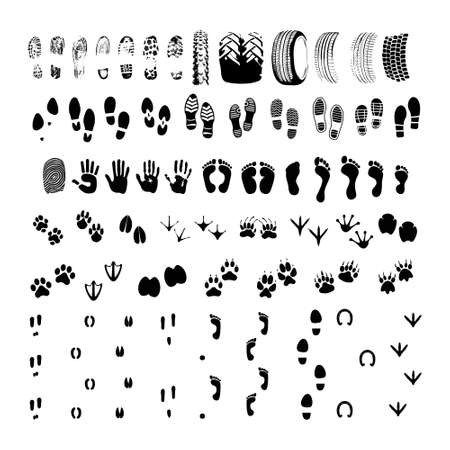 Big collection footprint of animals and people and transport trace silhouette. High quality pictograms for web design. Flat vector illustration Vettoriali