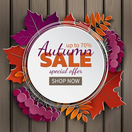 Autumn sale banner, paper frame, colorful tree leaf (maple, rowan leaves, rowanberry) on wooden background.