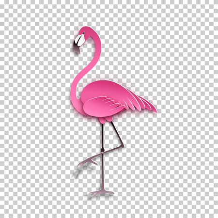 Pink flamingo standing on one leg. Vector illustration.