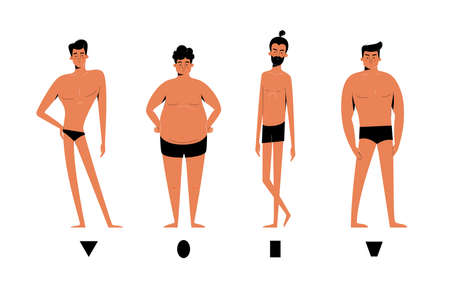 Male body shapes set - inverted triangle, oval, rectangle, rhomboid figure types. Human anatomy body shapes cartoon collection isolated on white, man character vector illustration, modern flat design  イラスト・ベクター素材