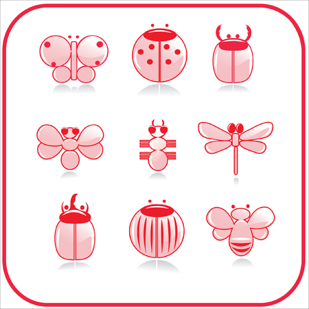 beetle: insects Illustration