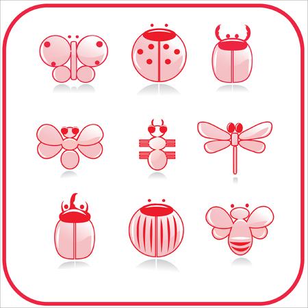 käfer: Insekten Illustration