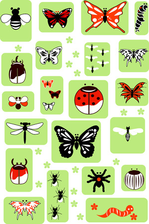 Set of Vector Insects Vector