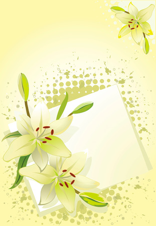 lily vector: Lily, vector grunge floral background