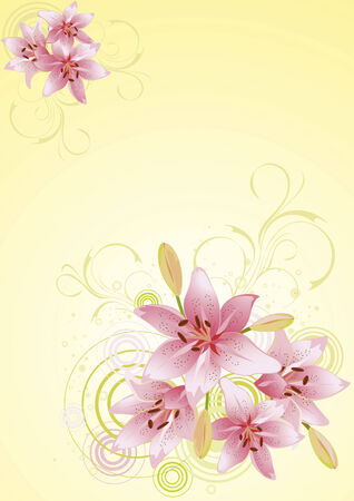 lily vector: Lily pink, vector floral background