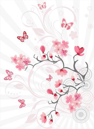 kersenboom: Kersenbloesem achtergrond