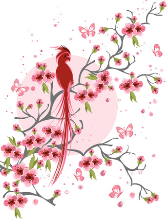 Cherry blossom and bird background Illustration