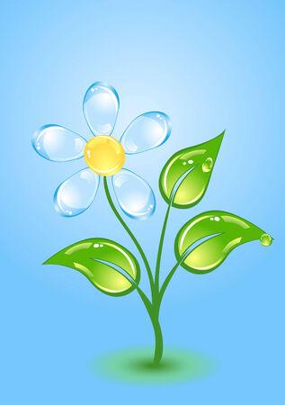 gloss: Beautiful gloss flower Illustration