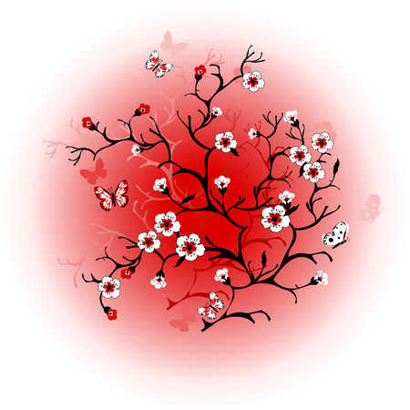 Cherry blossom against the sun