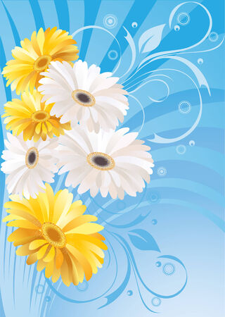 vector flowers: gerbera floral  blue background