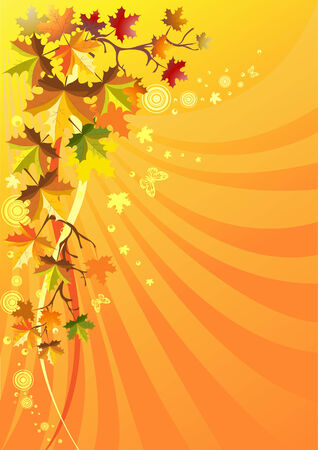Autumn foliage on a solar background Vector