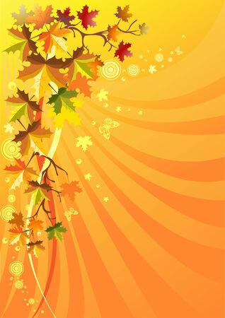Autumn foliage on a solar background Vector