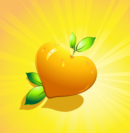 Orange citrus fruits in the form of heart. Valentines day. Vector