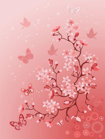 cherry tree:  Japanese cherry tree