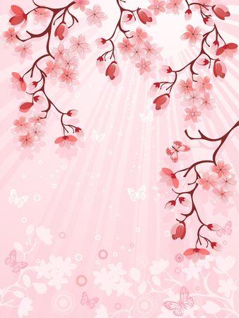 flor de sakura:  Flor de cerezo de japon�s Vectores