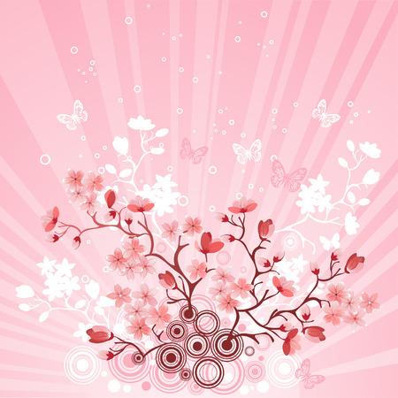 fleur de cerisier: Cerisier japonais au fond de la montagne