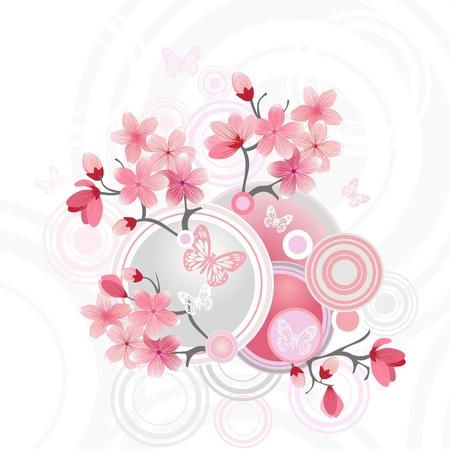 japanese flower:  Japanese cherry blossom Illustration