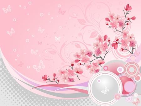 flor de sakura:  Japon�s cerezo en flor  Vectores