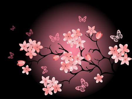 blossom tree: cherry blossom,  black background
