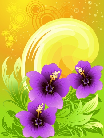 Vector illustration of summer composition with hibiscus, orange sun backgrounds  Stock Vector - 9275139