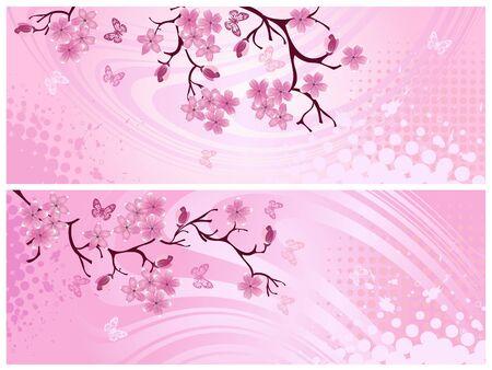 Cherry blossom, banner. Vector illustration   illustration