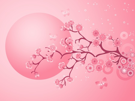 Pink Cherry Blossoms Sakura Stock Vector - 12121096