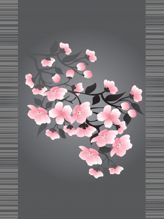 Sakura blossoms on a dark background Vector