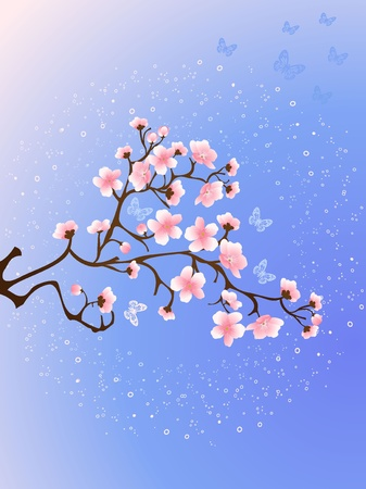 cherry blossoms at night Stock Vector - 17308231