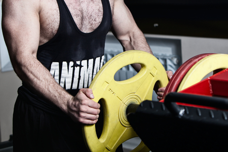 strong bodybuilder is engaged in the gym