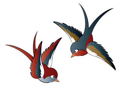 golondrinas: dos aves