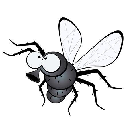 bugs: funny cartoon fly
