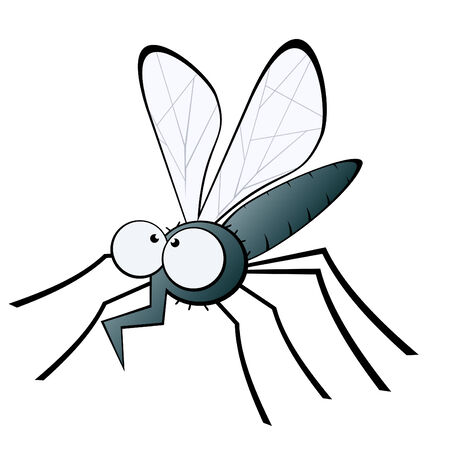 mosquito: funny cartoon mosquito Illustration