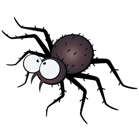 cartoon bug: funny cartoon spider Illustration