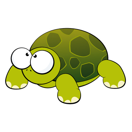 tortuga caricatura: tortuga Funny cartoon