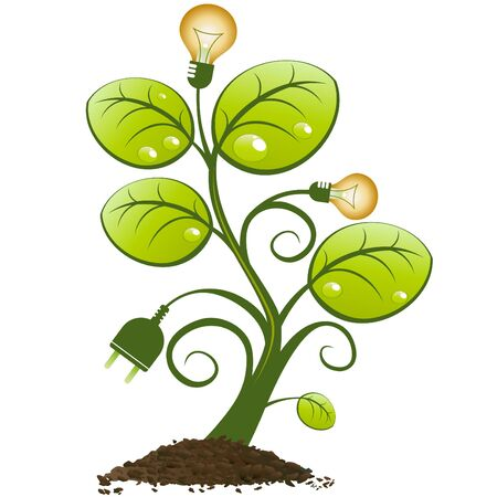 bioenergy: renewable resource tree