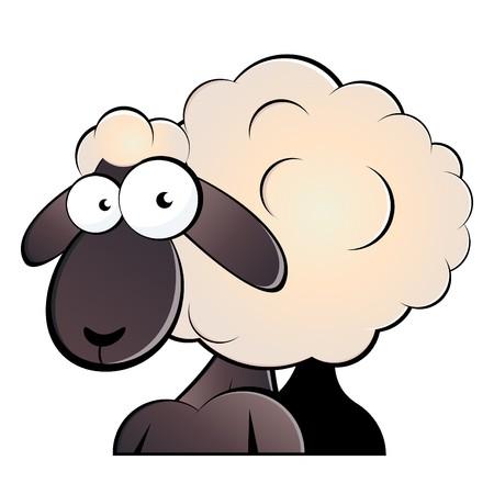 mouton cartoon: Dr�le de dessin anim� ovins  Illustration