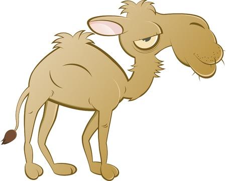 grappige cartoon kameel Vector Illustratie