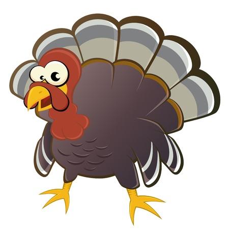 funny: funny cartoon turkey