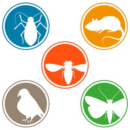 害虫のアイコンをコレクション