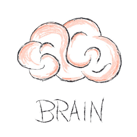 brain illustration: brain scribble vector illustration