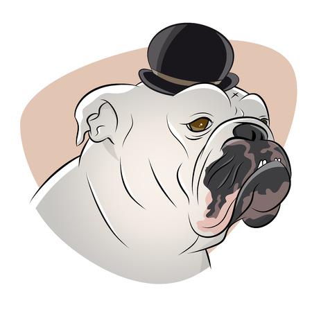 british: british bulldog with derby hat