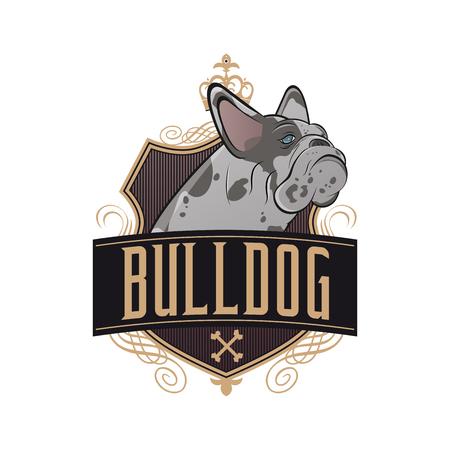 bulldog: bulldog franc�s con el blindaje de oro y adornos