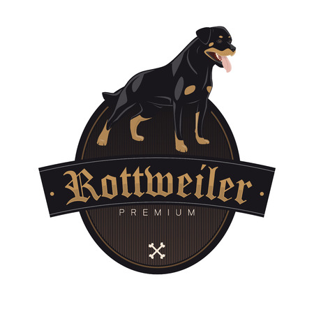 rottweiler hond in een badge vector illustratie