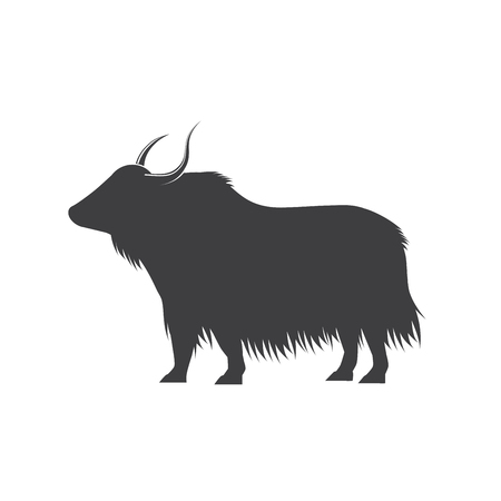 yak Bison illustration Illustration