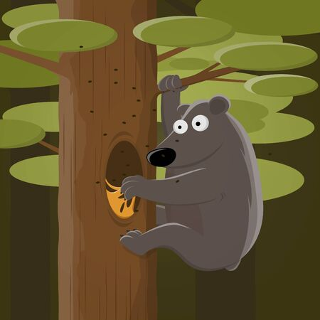 Funny cartoon of a bear climbing a tree and looking for honey
