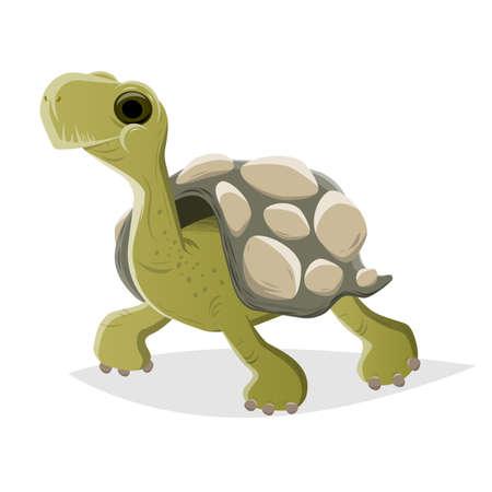 funny cartoon turtle vector illustration Illustration