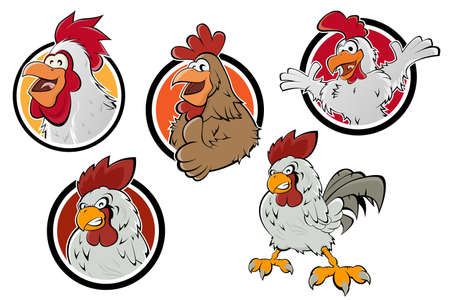 funny cartoon chicken   collection
