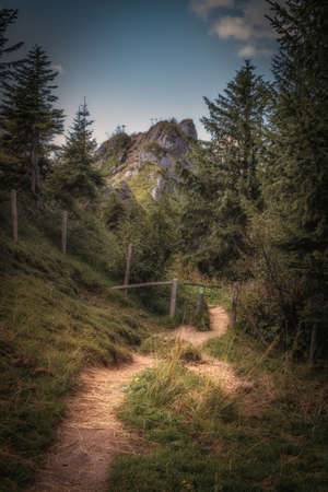 Hiking trail on the Nagelfluhkette in the Allgäu Alps