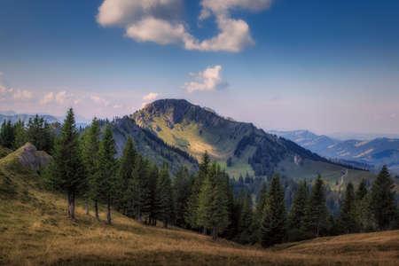 View from the Steineberg to the Stuiben summit on the Nagelfluhkette in the Allgäu Alps 免版税图像